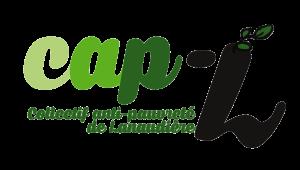 logo CAPL transparent